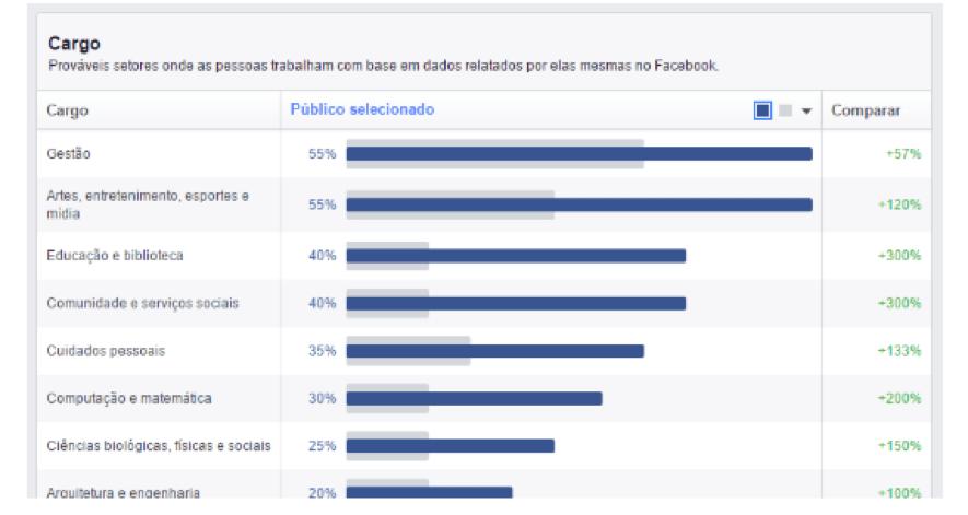 informações do público facebook